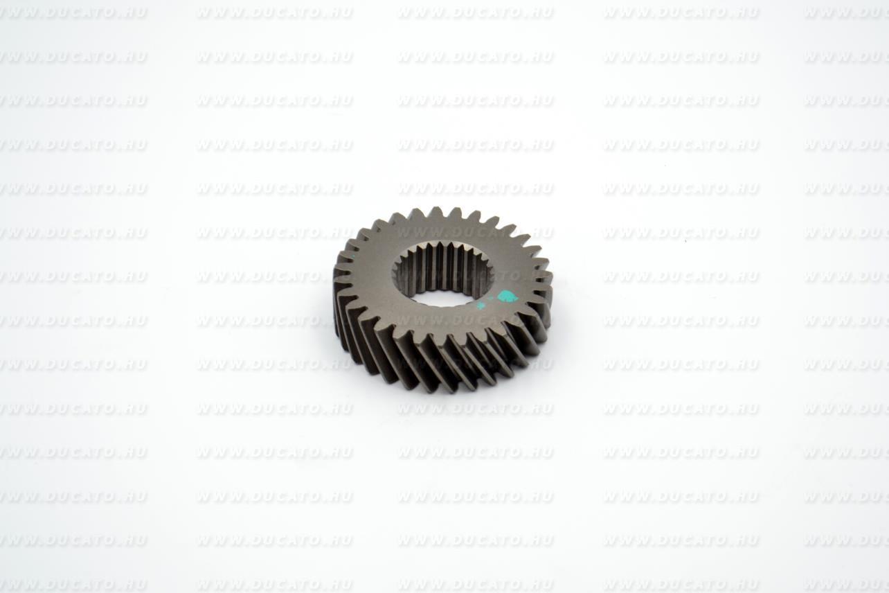 Fogaskerék 5. 53x31 kicsi MLGU5